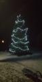 Stromeček v Kovářové