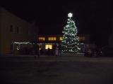 Vánoční strom v Ujčově