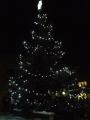 Stromeček v Ujčově