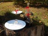 Karafa a talíře pro zvaní občanů pod máj